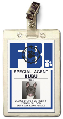FBI CLUB SPECIAL AGENT ��BUBU��
